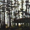 Slender Pines