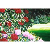 Kew (2003) detail