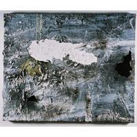 Magnetic Bi Polar Reversal (2006)