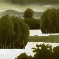 Landscape #75 (2006)
