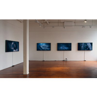 whitianga <<>> the crossing Exhibition View