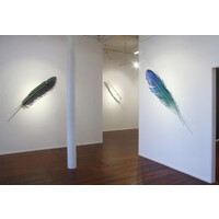 Feathers 2020 Exhibition View