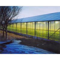 Geothermal Glasshouse (Hveragerdi), Iceland 2001 (printed 2001)