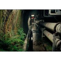 Wild Ferns/Underground Tunnel, Rangipo Underground Power Station (2005)