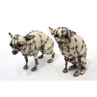 Chihuahuas (Reuben and Toby)