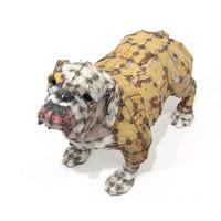 Bulldog (Winston)