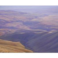 Falls Dam and the Race - Hawkdun