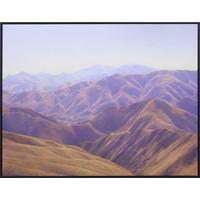 Maerewhenua Spur