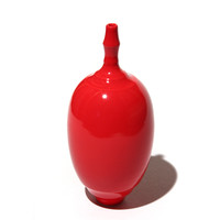 Red Bottle [11-61]