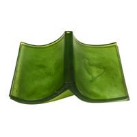 Takahe Book (Buller Still Life - Olive Green)