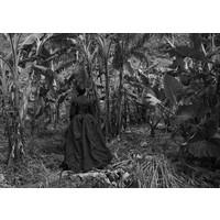 Plantation, Lalomanu