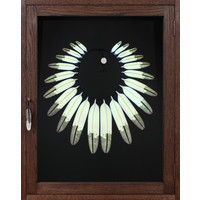 Eagle Series #2