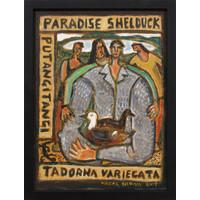 Paradise Shelduck