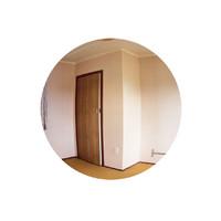 Phoenix Block, Room # Unknown [Veneer Door]