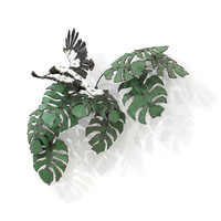 Magpie (Tropical Invasion II)
