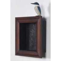 Kōtare / Kingfisher [24397]